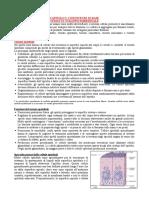 03 CONOSCENZE DI BASE Tessuti e sviluppo embrionale