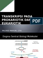 Transkripsi_Pada_Prokariotik_dan_Eukario.pptx