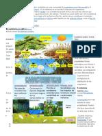 admon planificacion.docx