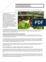 Muscadine-Planting-Instructions-4.8.19
