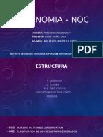 TAXONOMIA - NOC.pptx