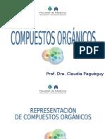 12_COMPUESTOS_ORGANICOS