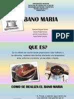 BANO-MARIA.pdf