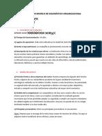 APLICACIÓN DE MODELO DE DIAGNOSTICO ORGANIZACIONAL MUESTRA