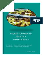 INFORME_01.pdf