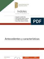 Indol-Final.pdf