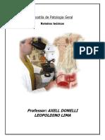 apostilas-completas-140308111409-phpapp01.pdf