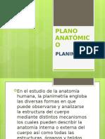PLANO ANATÓMICO