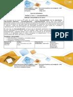 Guía de Actividades y rubrica de evaluación -Fase 3 Conceptualización (1)12.docx