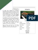 Anisoptera.pdf