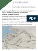 Diferencias y similitudes entre el dibujo y la pintura - ttamayo.com en ttamayo.com