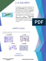 MALARIA Presentación.pptx - copia