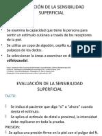 EVALUACIÓN DE LA SENSIBILIDAD - Terapia Ocupacional