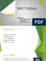 Spot radial