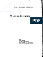 O Cão da Polaroid - Stephen King