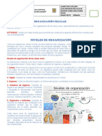 3. Guía Organización Celular