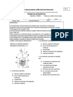 Prueba de Diagnostico Bio 1 Fb