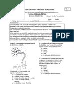 Prueba de Diagnostico Bio 3 Fb