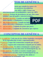 TEMA 5 y 6 DEFINITVO.pdf