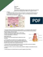 Aterosclerosi.docx