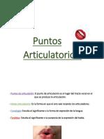 libro de puntos articulatorios listo pdf.pdf