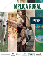 BI_Descomplica_Rural_web