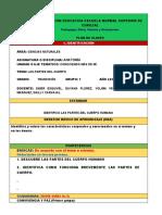 PLAN DE CLASE MEF 2020
