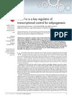 Ayala-Sumuano-2011-Srebf1a is a key regulator