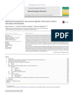 Algicidal microorganisms and secreted algicides