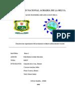 informe MRUV 10