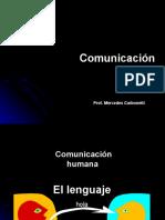 adquisición del lenguaje.ppt