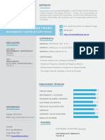 CV DOCUMENTADO.pdf