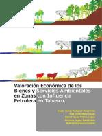 5. Valoracion economica de bienes y servicios ambientales