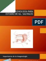 Clase IMAGENOLOGÍA PARA ESTUDIO DE GL SALIVALES (2).pdf