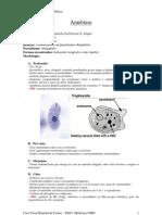 Resumo Parasitologia Médica - Protozoários