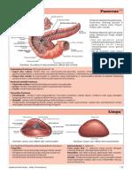 hal 113-114.pdf