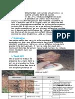 rapport geomorph sol part 2.docx