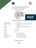 MODULO DE CARPINTERIA 2019 II - ZENON.docx