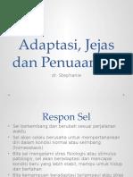 Adaptasi, Jejas dan Penuaan Sel.pptx
