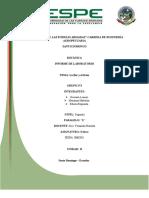 294695739-Informe-Flor-y-Fruto.docx