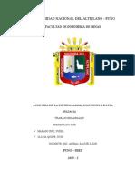 AUDITORIA DE JAMASSI.docx