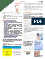 3 Infeccion urinaria y embarazo.pdf