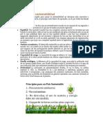Principios de la sustentabilidad.docx