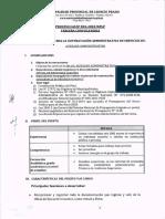 TDR 3RA CONVOCATORIA.pdf