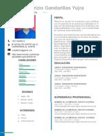 60-curriculum-vitae-con-foto.docx