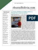 Hidrocarburos Bolivia Informe Semanal Del 06 Al 12 Diciembre 2010