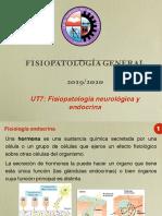 UT7_4