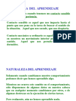 acetatos habilidades directivasl1.doc