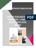 capacitacion-trabajo-seguro-alturas.pdf