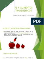 PLANAS Y ALIMENTOS TRANSGENICOS